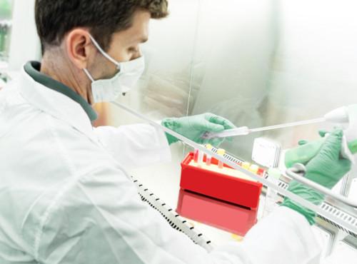 тестирование на наличие короновирусной болезни